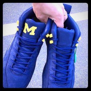 Jordan Michigan 12's